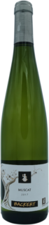 Muscat 2017